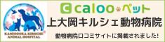 calooペット・上大岡キルシェ動物病院